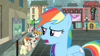 Rainbow Dash -Does everypony in this town want a cab- S4E08