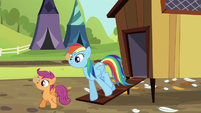 Rainbow and Scootaloo balancing eggs S5E17