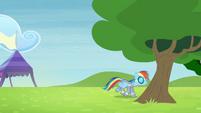 Rainbow walking towards behind the tree S4E10
