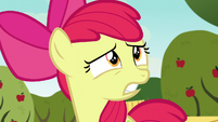 """Apple Bloom shocked """"what?!"""" S5E4"""