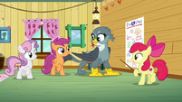 CMC moving their legs and Gabby moving her body as the song begins S6E19