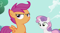 Scootaloo Confused S2E6