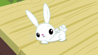 Angel Bunny wants back scratches S9E18