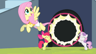 Fluttershy flying through the hoop S4E24