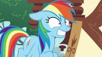 Rainbow Dash grinning maniacally S8E20