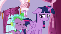 Spike lightly tickled by star spider web S9E26