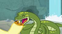 Antoine eats rest of a snake treat S9E18