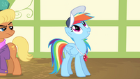 """Rainbow Dash """"the single most important thing"""" S4E05"""