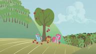 S01E04 Rainbow i Pinkie zbierają jabłka
