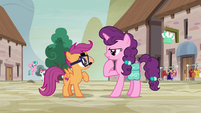 Sugar Belle trying to recognize Scootaloo S7E8