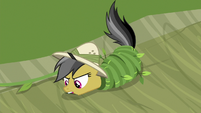 Daring Do picks up rock with her teeth S9E21