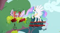 Princess Celestia S1E15