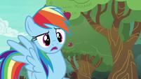 "Rainbow Dash ""distance bucking?"" S6E18"