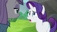 """Rarity """"she was willing to give up"""" S6E3"""