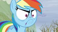 S05E05 Wściekła Rainbow Dash