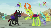 Thorax correcting -it's a feelings forum- S7E17