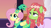 Fluttershy and Tree Hugger look up at Discord S5E7