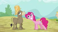 Pinkie Pie Happy For Cranky S02E18