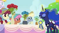 Princess Luna judging the royal rose contest S7E10