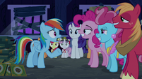 "Rainbow Dash ""what's happening?"" S6E15"