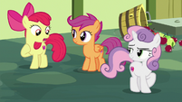 "Apple Bloom ""the one who is careless!"" S8E12"