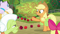 Applejack pointing at the patterns S9E10
