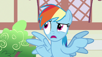 """Rainbow Dash """"another parasprite hype story"""" S7E18"""