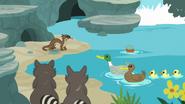 S07E05 Zwierzęta w stawie