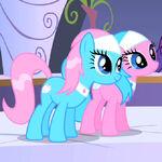 Spa Ponys