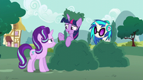 Twilight Sparkle --who can really say-- S6E6