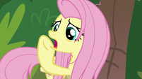 """Fluttershy """"shift your weight, Scout!"""" S9E18"""