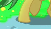 Green slime spilling over at Daring Do's hooves S7E18