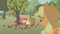 S01E12 Zakłopotana Apple Bloom