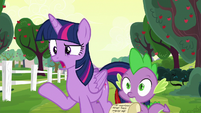 Twilight Sparkle --Rarity and Pinkie's fault-- S6E22