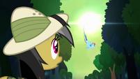 Daring Do sees Rainbow fly off S4E04