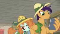 Pegasus stallion and Peach Fuzz look distraught S9E21