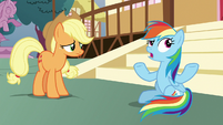 Rainbow -none of us did any better- S8E18