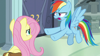 "Rainbow Dash ""save precious artifacts"" S9E21"
