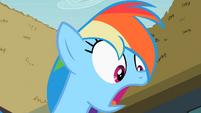Rainbow Dash surprised S2E08
