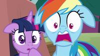 Twilight and Rainbow Dash shocked S8E20