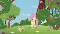 Animals running away from filly Fluttershy S5E25