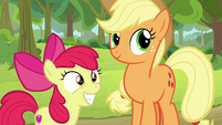 Apple Bloom grinning at the grannies S9E10