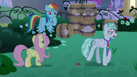 RD and Fluttershy worried about Flatterfly S9E17