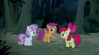 Scootaloo -he's been looking at his cutie mark wrong- S5E6