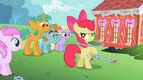 Apple Bloom -You seein' dis-- S2E6