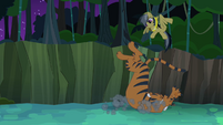 Daring Do dodges tiger pounce S4E04