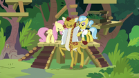 Fluttershy and Dr. Fauna remove Clementine's cast S9E18