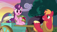 "Big Mac ""a Hearts and Hooves Day surprise!"" S8E10"