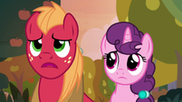 "Big Mac ""like Hearts and Hooves Day"" S9E23"