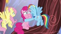 Rainbow Dash consoling Pinkie Pie S5E19